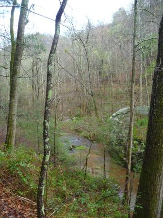 View of the South Pacolet River from the trail above the river