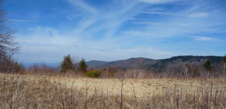 View from the meadow near the southeastern terminus of Fork Mountain