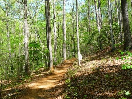 Pinnacle Mountain Trail
